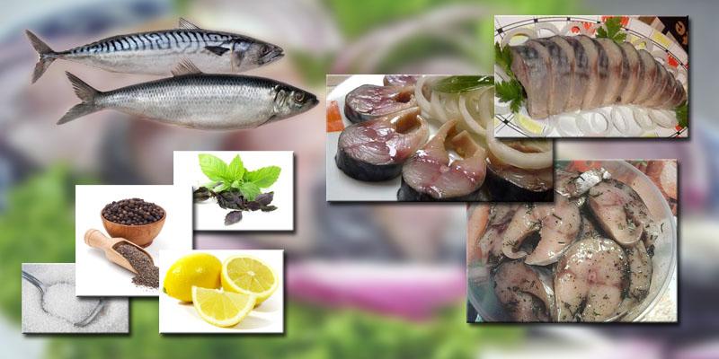 Как вкусно посолить рыбу