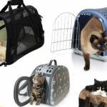 Как выбрать сумку-переноску для кошки?